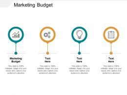 Marketing Budget Ppt Powerpoint Presentation Inspiration Demonstration Cpb