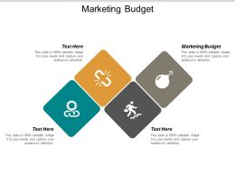 Marketing Budget Ppt Powerpoint Presentation Styles Guide Cpb