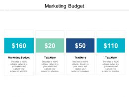 Marketing Budget Ppt Powerpoint Presentation Summary Structure Cpb