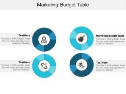 Marketing Budget Table Ppt Powerpoint Presentation Portfolio Pictures Cpb
