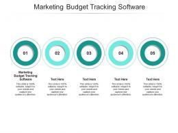 Marketing Budget Tracking Software Ppt Powerpoint Presentation Inspiration Example Topics Cpb
