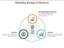 Marketing Budget Vs Revenue Ppt Powerpoint Presentation Layouts Guidelines Cpb