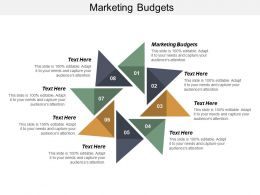 Marketing Budgets Ppt Powerpoint Presentation Outline Background Cpb