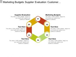 Marketing Budgets Supplier Evaluation Customer Segmentation Production Management