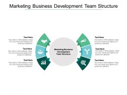 Marketing Business Development Team Structure Ppt Powerpoint File Objects Cpb