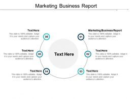 Marketing Business Report Ppt Powerpoint Presentation Portfolio Infographics Cpb