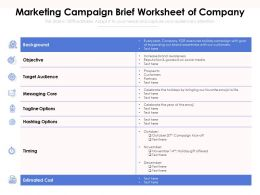 Marketing Campaign Brief Worksheet Of Company