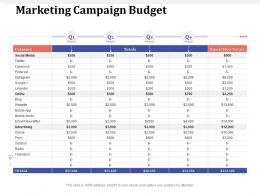 Marketing Campaign Budget Fiscal Ppt Powerpoint Presentation Ideas Graphics Example