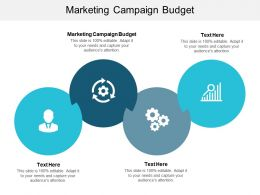 Marketing Campaign Budget Ppt Powerpoint Presentation Portfolio Show Cpb