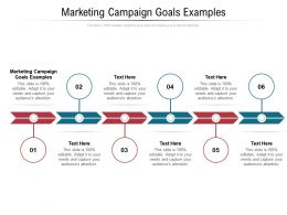 Marketing Campaign Goals Examples Ppt Powerpoint Presentation Icon Design Templates Cpb