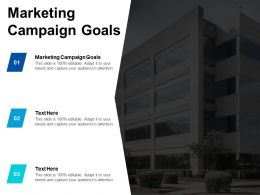 Marketing Campaign Goals Ppt Powerpoint Presentation Ideas Inspiration Cpb