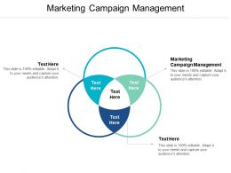 Marketing Campaign Management Ppt Powerpoint Presentation Gallery Portrait Cpb