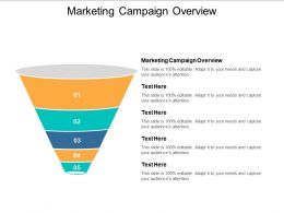 Marketing Campaign Overview Ppt Powerpoint Presentation Infographics Outfit Cpb