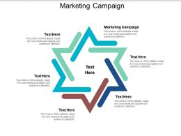 Marketing Campaign Ppt Powerpoint Presentation Outline Grid Cpb