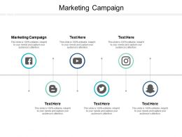 Marketing Campaign Ppt Powerpoint Presentation Summary Structure Cpb