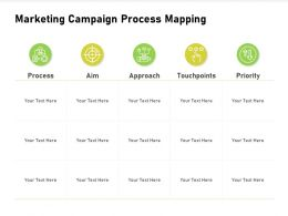 Marketing Campaign Process Mapping Touchpoints Powerpoint Presentation Summary Icon