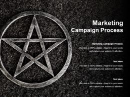 Marketing Campaign Process Ppt Powerpoint Presentation Model Example Topics Cpb