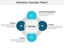 Marketing Campaign Report Ppt Powerpoint Presentation Portfolio Tips Cpb