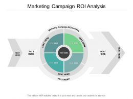 Marketing Campaign ROI Analysis Ppt Powerpoint Presentation Slides Model Cpb