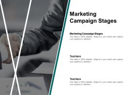 Marketing Campaign Stages Ppt Powerpoint Presentation Templates Cpb