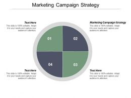 Marketing Campaign Strategy Ppt Powerpoint Presentation Infographics Guide Cpb