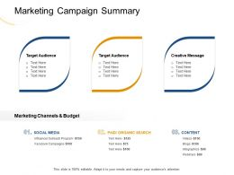 Marketing Campaign Summary Webinars Ppt Powerpoint Presentation Infographic Template Slides