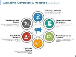 Marketing Campaigns And Promotion Ppt Icon