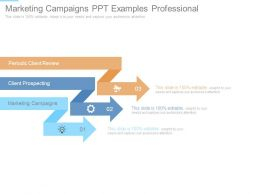 Marketing Campaigns Ppt Examples Professional