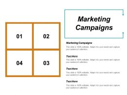 Marketing Campaigns Ppt Powerpoint Presentation File Background Designs Cpb