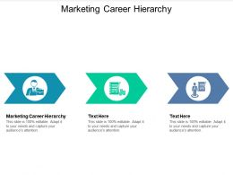 Marketing Career Hierarchy Ppt Powerpoint Presentation Ideas Picture Cpb