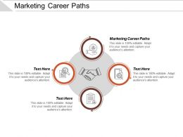 Marketing Career Paths Ppt Powerpoint Presentation Styles Demonstration Cpb