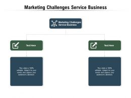 Marketing Challenges Service Business Ppt Powerpoint Presentation Slides Layout Ideas Cpb