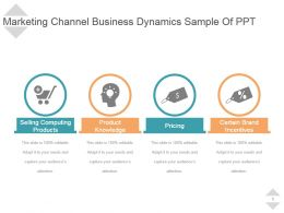 Marketing Channel Business Dynamics Sample Of Ppt