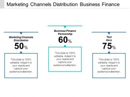 Marketing Channels Distribution Business Finance Partnership Contingency Planning Cpb
