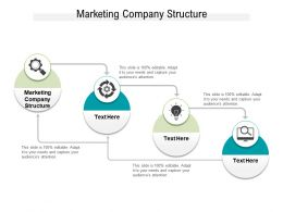 Marketing Company Structure Ppt Powerpoint Presentation File Themes Cpb