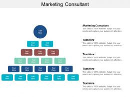 Marketing Consultant Ppt Powerpoint Presentation Ideas Graphics Cpb
