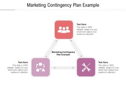 Marketing Contingency Plan Example Ppt Powerpoint Presentation Summary Background Image Cpb