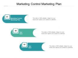 Marketing Control Marketing Plan Ppt Powerpoint Presentation Inspiration Background Cpb
