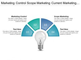 Marketing Control Scope Marketing Current Marketing Financial Projections