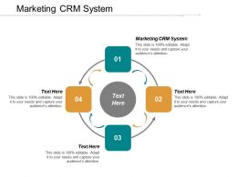 Marketing CRM System Ppt Powerpoint Presentation Gallery Example Cpb