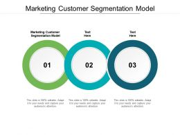 Marketing Customer Segmentation Model Ppt Powerpoint Presentation Inspiration Ideas Cpb