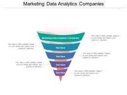 Marketing Data Analytics Companies Ppt Powerpoint Presentation File Visual Aids Cpb