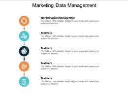 Marketing Data Management Ppt Powerpoint Presentation Summary Samples Cpb