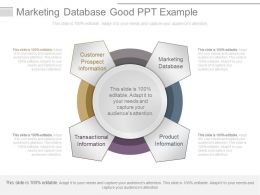 Marketing Database Example Of Ppt Images