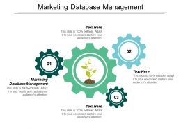 Marketing Database Management Ppt Powerpoint Presentation Icon Format Ideas Cpb