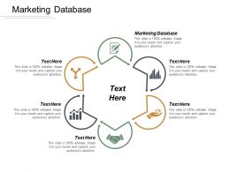 Marketing Database Ppt Powerpoint Presentation File Template Cpb