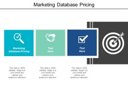 Marketing Database Pricing Ppt Powerpoint Presentation Infographics Guide Cpb