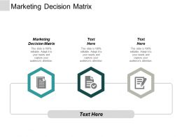 Marketing Decision Matrix Ppt Powerpoint Presentation Professional Files Cpb