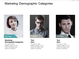 Marketing Demographic Categories Ppt Powerpoint Presentation Portfolio Layouts Cpb