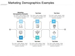 Marketing Demographics Examples Ppt Powerpoint Presentation Outline File Formats Cpb